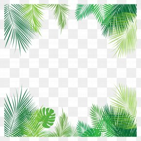 Palm Leaves Vector - Clip Art Vector Graphics Leaf Palm Trees PNG