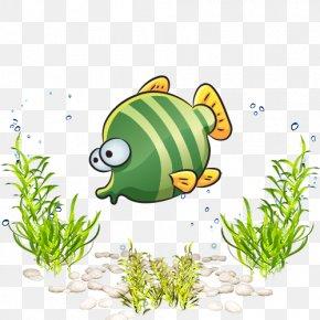 Sea World Marine Life Cartoon Fish - Sea Marine Biology PNG