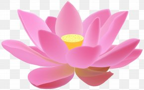 Realistic Spring Flowers Background - Diya Diwali Candle Clip Art PNG
