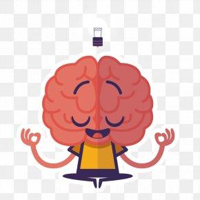 Creative Human Brain - Human Brain Thought Midbrain PNG