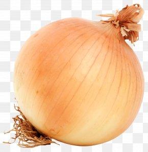 Brown Onion - French Onion Soup Yellow Onion Piyaz PNG