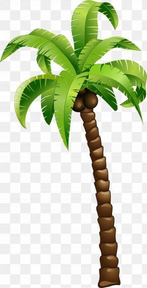 Cartoon Green Coconut Tree - Coconut Tree PNG