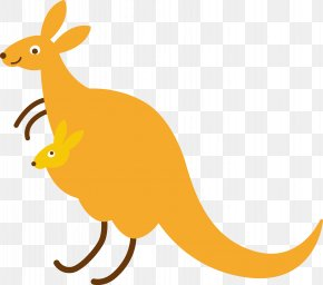 Vector Cartoon Kangaroo - Kangaroo Macropodidae Clip Art PNG