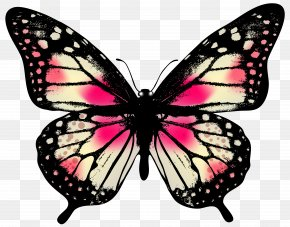 Large Pink Butterfly Clip Art Image - Butterfly Pink Clip Art PNG