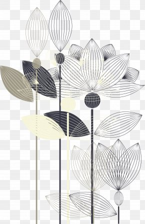 Hand-painted Black And White Lotus - Black And White PNG