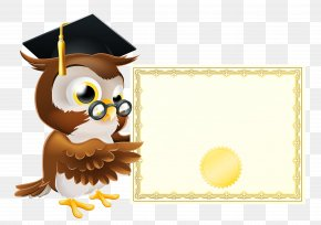 Owl With School Diploma Clipart Picture - Owl School Clip Art PNG