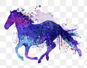 Horse - Pony Horse Watercolor Painting PNG