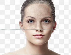 Women Young And Old Face Comparison - Anti-aging Cream Wrinkle Face Ageless PNG