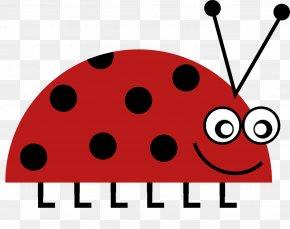 Hand-painted Beetle - Beetle Ladybird Clip Art PNG