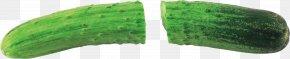 Cucumber - Leaf Green Headgear PNG