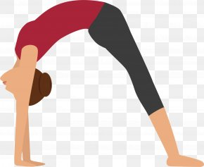 People Do Yoga - Yoga To The People Download Anti-gravity Yoga PNG