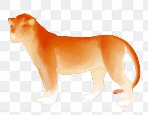 Fiery Lion - Lion Big Cat Animal Wildlife PNG