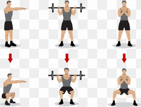 Gymnastics Weightlifting - Squat Olympic Weightlifting Physical Exercise Strength Training PNG
