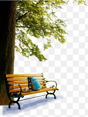 Park Bench - Table Bench Garden Furniture PNG