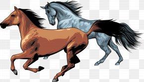 Horse - Horse Pony Clip Art PNG