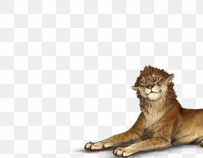 Lion - Whiskers Lion Cat Felidae Tiger PNG