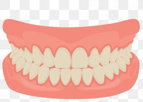 Vector Cartoon Mouth Smiling Teeth - Human Tooth Smile Mouth Dentistry PNG