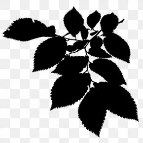 M Flower Plant Stem Leaf - Twig Black & White PNG