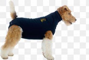 Dog With Collar - Dog Cat Surgery Elizabethan Collar Pet PNG