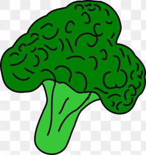 Vegetable - Broccoli Vegetable Clip Art PNG