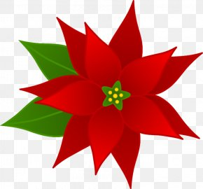 Free Floral Header - Clip Art Christmas Poinsettia Openclipart Joulukukka PNG