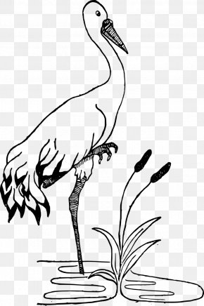 Stork - Crane Black And White Drawing Clip Art PNG