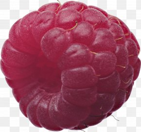 Rraspberry Image - Red Raspberry PNG