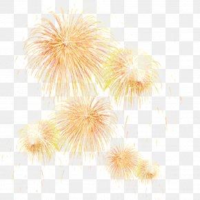 Fireworks Effect - Adobe Fireworks Firecracker PNG