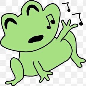 Frog Line Art - Hyla Green Tree Frog Cartoon Clip Art PNG