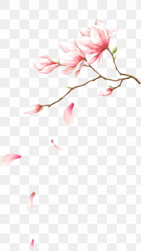 Flowers With Petals Falling On - Pink Flowers Petal Computer File PNG