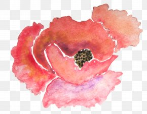 Watercolor Flower - Paper Poppy Watercolor Painting Flower Zazzle PNG