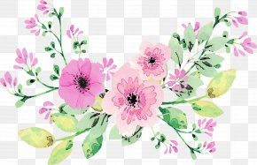 Bouquet Anemone - Bouquet Of Flowers Drawing PNG