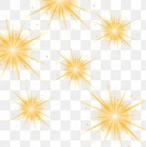 Star Luminous Vector - Dahlia Flower Pattern PNG