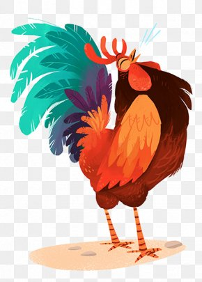Chicken - Chicken Drawing Rooster Model Sheet Illustration PNG