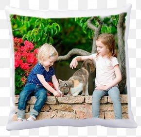 Pillow - Throw Pillows Cushion Textile Google Play PNG