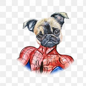 Hand Painted Watercolor Dog Spiderman - Pug Spider-Man Puppy PNG