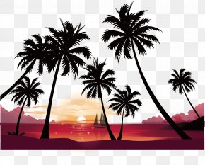 Seaside Sunset Coconut Tree Vector - Sunset High-definition Video Image Resolution Wallpaper PNG