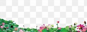 Lotus - Lotus Floral Design Pink Flowers PNG