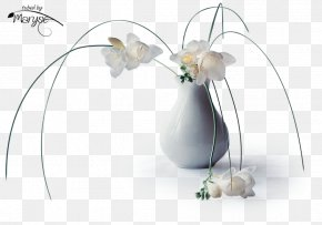 Still Life - Flower Still Life. Pipes Floral Design Still Life Photography Vase PNG