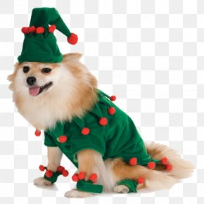 Dog Clothes - Dog Santa Claus Amazon.com Costume Pet PNG