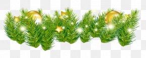 Christmas - Christmas Tree Garland Stock Photography Clip Art PNG