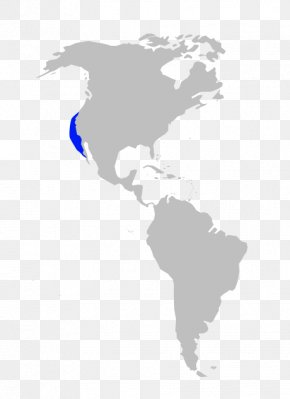 United States - United States South America Mexico Country Canada PNG