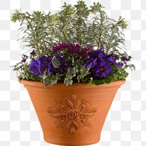 Pot - Chelsea Flower Show Flowerpot Houseplant PNG