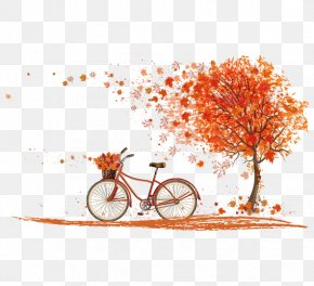 Autumn Maple Leaves Vector - Bicycle Autumn Leaf Color Cycling PNG