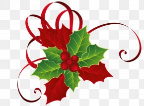 Christmas Red Green Mistletoe Picture - Mistletoe Christmas Clip Art PNG