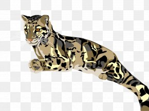 Leopard - Felidae Cheetah Ocelot Amur Leopard Clouded Leopard PNG
