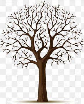 Apple Tree - Wall Decal Tree Sticker PNG