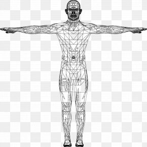 Euclidean Vector - Website Wireframe Man PNG