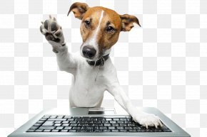 Creative Keyboard By Dog - Dog Training Pet Sitting Abrams Forest Veterinary Clinic PNG