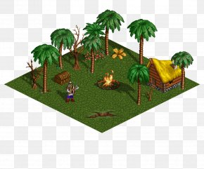 Isometric Graphics In Video Games And Pixel Art - Heroes Of Might And Magic III Might And Magic III: Isles Of Terra Palm Kingdoms Tree Jungle PNG